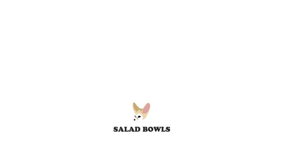 샐러드볼즈(SALAD BOWLS) SIGNATURE SLDB T-SHIRT [BLACK]